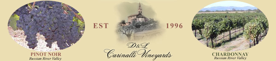 D and L Carinalli Vineyard, Established in 1996